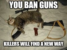 YOU BAN GUNS KILLERS WILL FIND A NEW WAY | image tagged in cat gun,memes,gun,meme | made w/ Imgflip meme maker