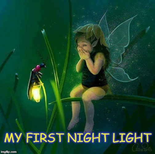 My First Night Light | MY FIRST NIGHT LIGHT | image tagged in lightning bug,firefly,fairy,nightlight,fairy dust,twinkle | made w/ Imgflip meme maker