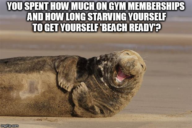 YOU SPENT HOW MUCH ON GYM MEMBERSHIPS AND HOW LONG STARVING YOURSELF TO GET YOURSELF 'BEACH READY'? | image tagged in file///c/users/utilisateur/downloads/ss-111018-laughing-animal | made w/ Imgflip meme maker