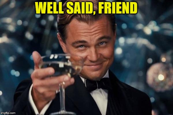 Leonardo Dicaprio Cheers Meme | WELL SAID, FRIEND | image tagged in memes,leonardo dicaprio cheers | made w/ Imgflip meme maker