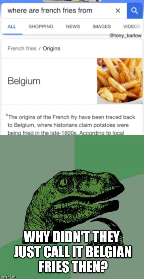 Something is fishy here... | WHY DIDN'T THEY JUST CALL IT BELGIAN FRIES THEN? | image tagged in memes,funny memes,french fries,belgium,philosoraptor | made w/ Imgflip meme maker