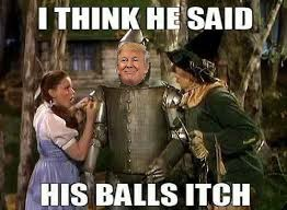 Off to see the wizard. ... . | image tagged in memes,donald trump,wizard of oz,twitter,funny memes | made w/ Imgflip meme maker