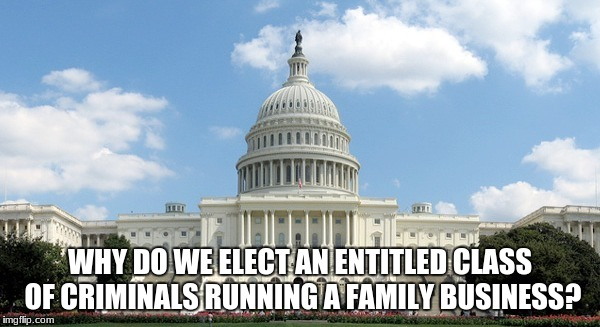 WHY DO WE ELECT AN ENTITLED CLASS OF CRIMINALS RUNNING A FAMILY BUSINESS? | image tagged in ugh congress | made w/ Imgflip meme maker