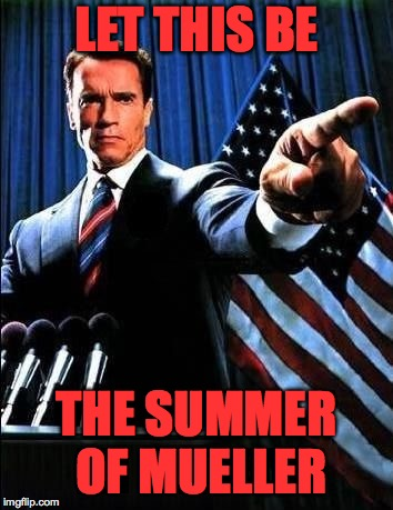 LET THIS BE THE SUMMER OF MUELLER | made w/ Imgflip meme maker