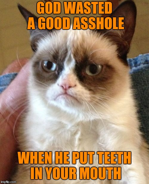 Grumpy Cat Meme | GOD WASTED A GOOD ASSHOLE WHEN HE PUT TEETH IN YOUR MOUTH | image tagged in memes,grumpy cat | made w/ Imgflip meme maker