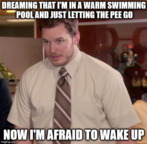 Afraid To Ask Andy Meme | DREAMING THAT I'M IN A WARM SWIMMING POOL AND JUST LETTING THE PEE GO NOW I'M AFRAID TO WAKE UP | image tagged in memes,afraid to ask andy | made w/ Imgflip meme maker