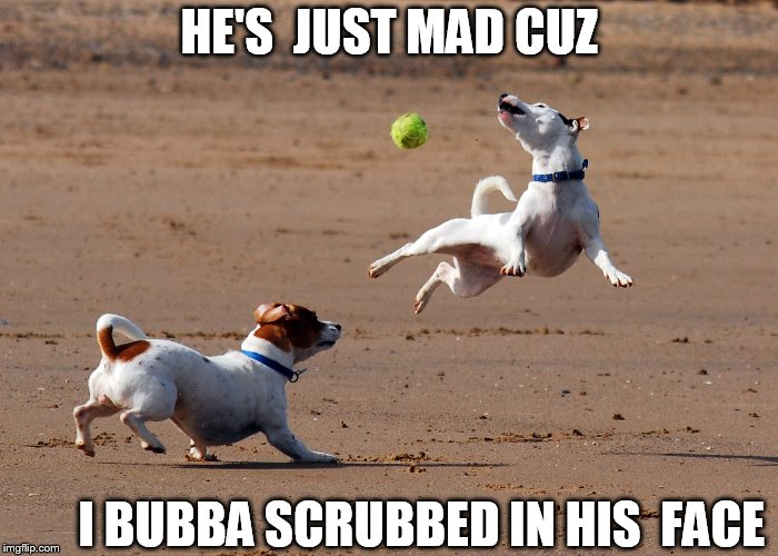 scrub WHAT??????????????  SCRUB THIS DOG! | HE'S  JUST MAD CUZ I BUBBA SCRUBBED IN HIS  FACE | image tagged in bubba scrub,in yo face | made w/ Imgflip meme maker