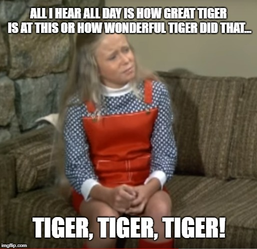 Tiger Tiger Tiger | ALL I HEAR ALL DAY IS HOW GREAT TIGER IS AT THIS OR HOW WONDERFUL TIGER DID THAT... TIGER, TIGER, TIGER! | image tagged in tiger woods,pga tour,golf,the brady bunch,pga,golf channel | made w/ Imgflip meme maker