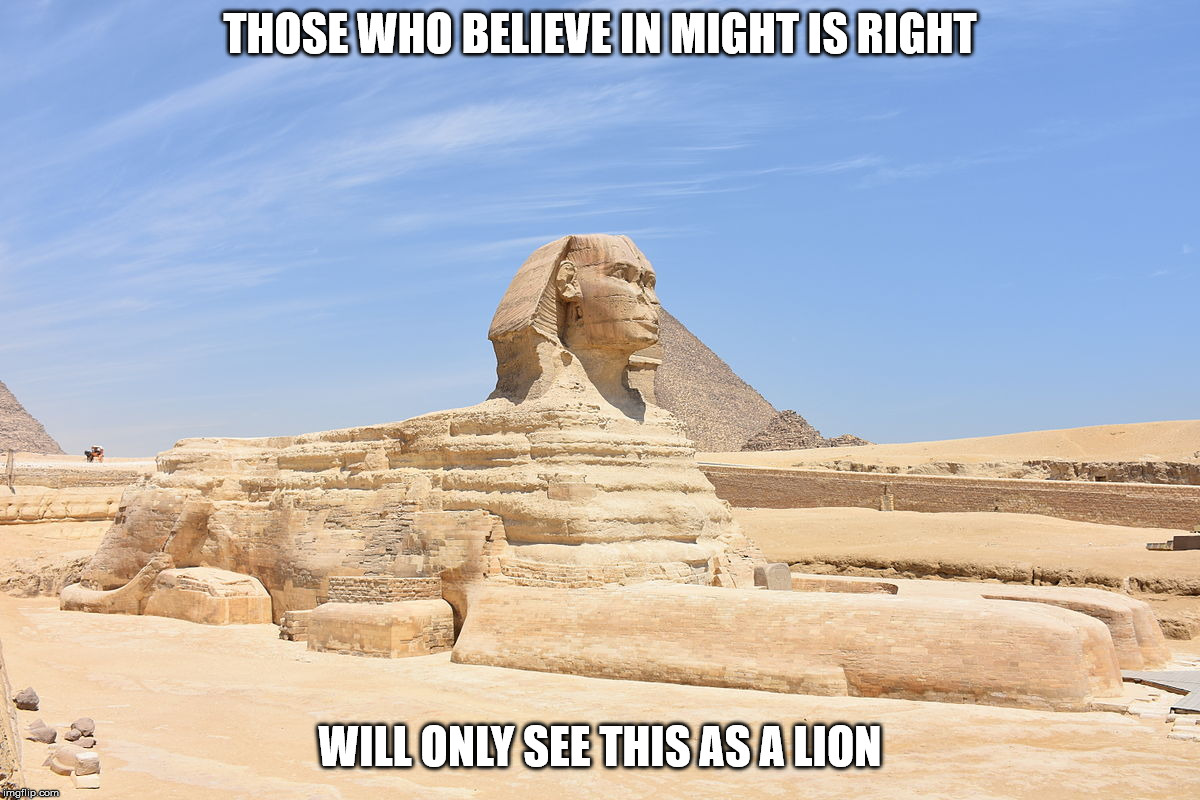 THOSE WHO BELIEVE IN MIGHT IS RIGHT WILL ONLY SEE THIS AS A LION | image tagged in might is right,malignant narcissism,sexual narcissism,lion,human stupidity,psychopathy | made w/ Imgflip meme maker