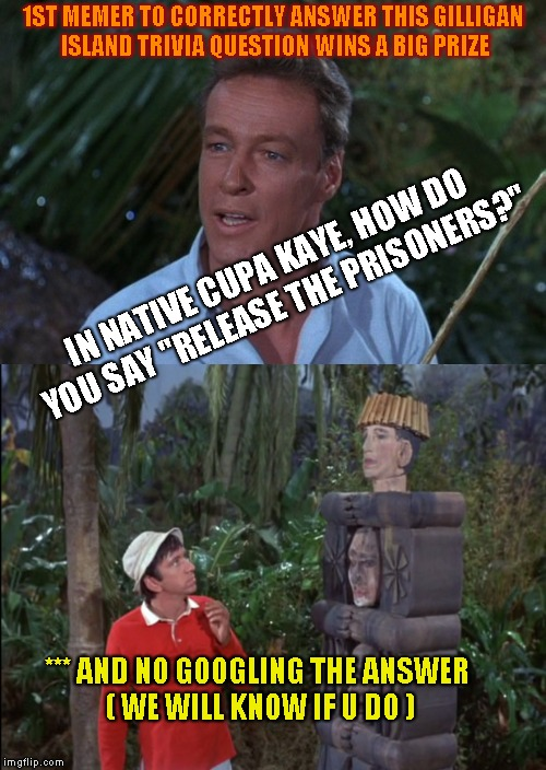 The Professor's Challenge - Number 1 | 1ST MEMER TO CORRECTLY ANSWER THIS GILLIGAN ISLAND TRIVIA QUESTION WINS A BIG PRIZE *** AND NO GOOGLING THE ANSWER ( WE WILL KNOW IF U DO )  | image tagged in gilligan's island,kupa kaye mutha flubber,its not kona the barbarian,it sounds like it could be a 2019 line dance name,i sing th | made w/ Imgflip meme maker