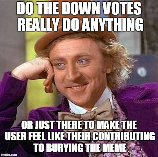 Creepy Condescending Wonka Meme | DO THE DOWN VOTES REALLY DO ANYTHING OR JUST THERE TO MAKE THE USER FEEL LIKE THEIR CONTRIBUTING TO BURYING THE MEME | image tagged in memes,creepy condescending wonka | made w/ Imgflip meme maker