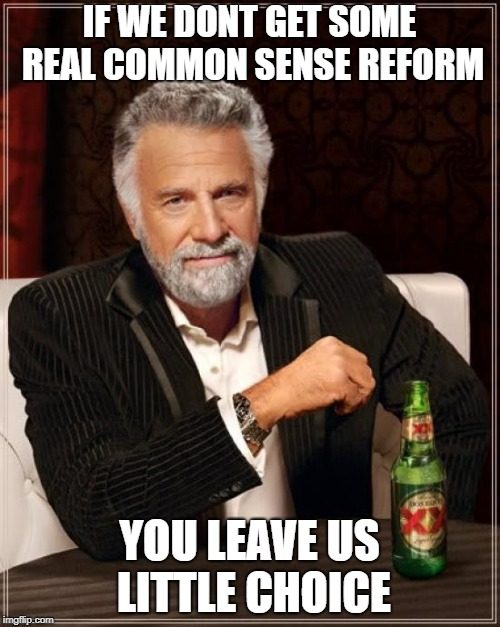The Most Interesting Man In The World Meme | IF WE DONT GET SOME REAL COMMON SENSE REFORM YOU LEAVE US LITTLE CHOICE | image tagged in memes,the most interesting man in the world | made w/ Imgflip meme maker