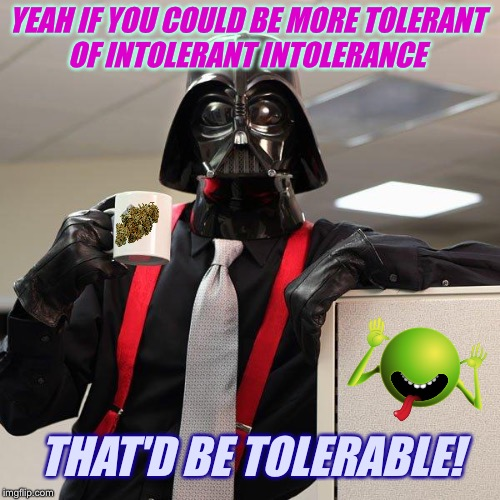YEAH IF YOU COULD BE MORE TOLERANT OF INTOLERANT INTOLERANCE THAT'D BE TOLERABLE! | made w/ Imgflip meme maker