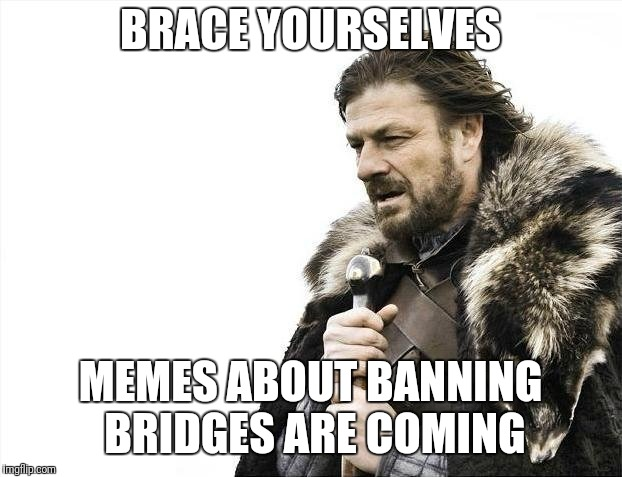 Brace Yourselves X is Coming Meme | BRACE YOURSELVES MEMES ABOUT BANNING BRIDGES ARE COMING | image tagged in memes,brace yourselves x is coming | made w/ Imgflip meme maker