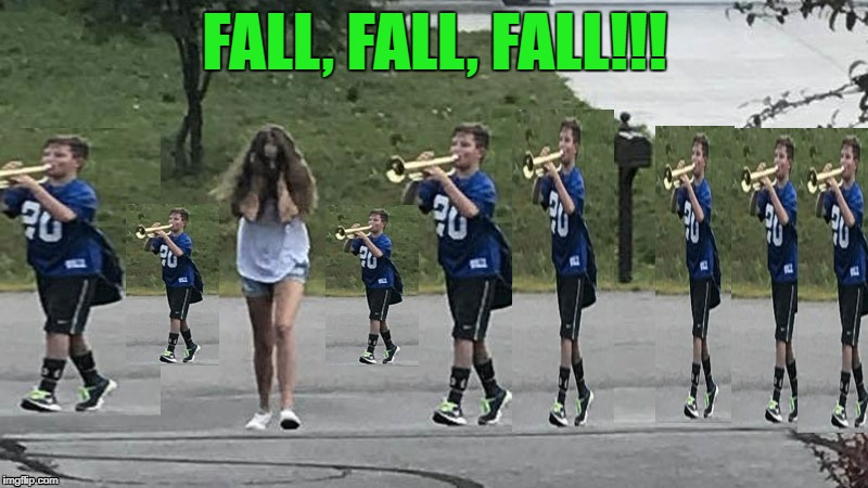 FALL, FALL, FALL!!! | made w/ Imgflip meme maker