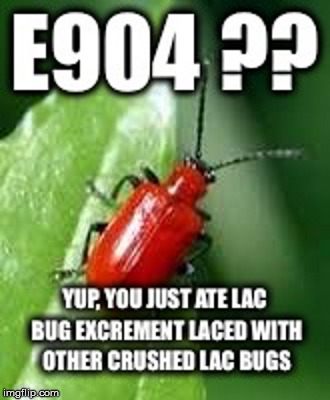 E904 | image tagged in shellac,candies,vegan,e904,lac bug | made w/ Imgflip meme maker