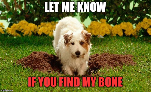 LET ME KNOW IF YOU FIND MY BONE | made w/ Imgflip meme maker