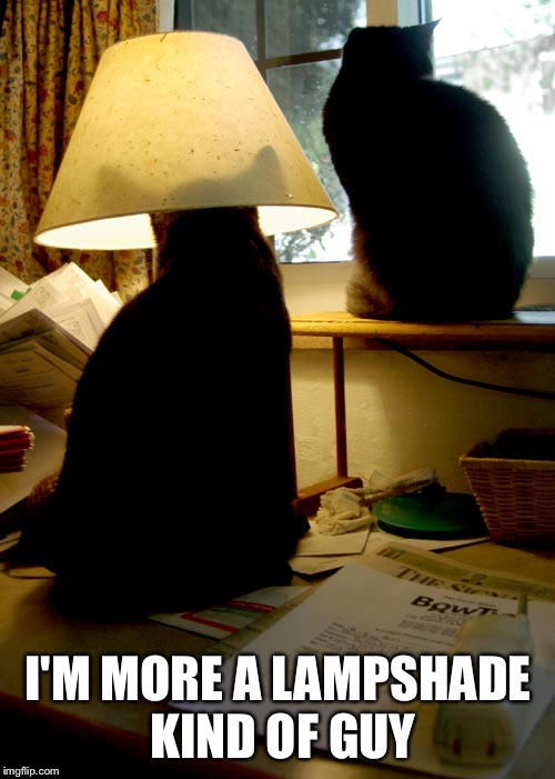 I'M MORE A LAMPSHADE KIND OF GUY | made w/ Imgflip meme maker