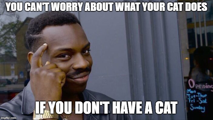 Roll Safe Think About It Meme | YOU CAN'T WORRY ABOUT WHAT YOUR CAT DOES IF YOU DON'T HAVE A CAT | image tagged in memes,roll safe think about it | made w/ Imgflip meme maker