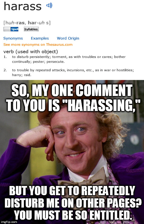 "When a hypocritical troll harasses you and then says you are... | SO, MY ONE COMMENT TO YOU IS ""HARASSING,"" BUT YOU GET TO REPEATEDLY DISTURB ME ON OTHER PAGES? YOU MUST BE SO ENTITLED. 