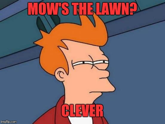 Futurama Fry Meme | MOW'S THE LAWN? CLEVER | image tagged in memes,futurama fry | made w/ Imgflip meme maker