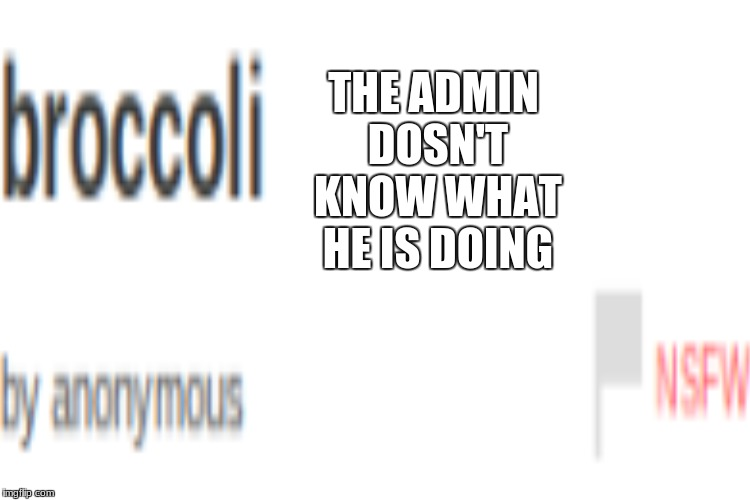 THE ADMIN DOSN'T KNOW WHAT HE IS DOING | made w/ Imgflip meme maker
