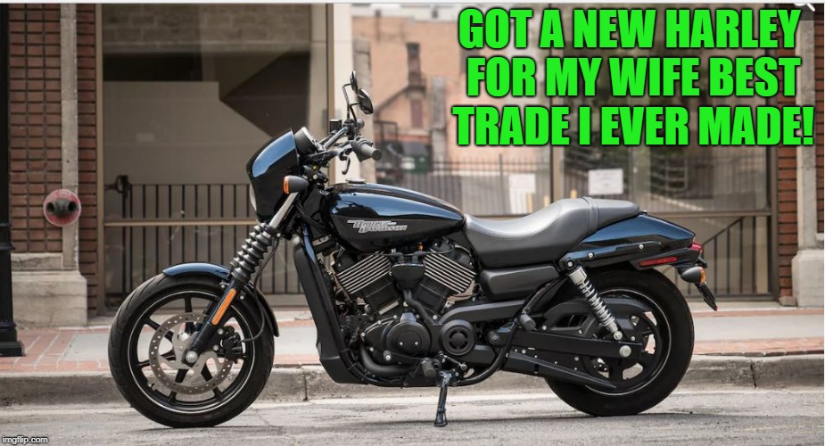 got a new harley for the wife | GOT A NEW HARLEY FOR MY WIFE BEST TRADE I EVER MADE! | image tagged in harley davidson | made w/ Imgflip meme maker