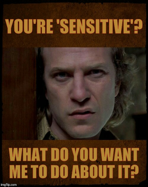 YOU'RE 'SENSITIVE'? WHAT DO YOU WANT ME TO DO ABOUT IT? | image tagged in buffalo bill are you serious?   | made w/ Imgflip meme maker