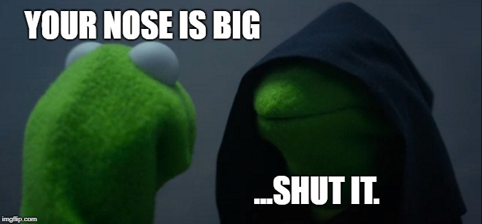 Evil Kermit Meme | YOUR NOSE IS BIG ...SHUT IT. | image tagged in memes,evil kermit | made w/ Imgflip meme maker