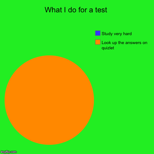 What I do for a test | Look up the answers on quizlet, Study very hard | image tagged in funny,pie charts | made w/ Imgflip pie chart maker