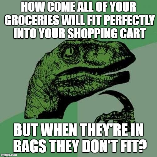 Philosoraptor | HOW COME ALL OF YOUR GROCERIES WILL FIT PERFECTLY INTO YOUR SHOPPING CART BUT WHEN THEY'RE IN BAGS THEY DON'T FIT? | image tagged in memes,philosoraptor,doctordoomsday180,groceries,shopping cart,fit | made w/ Imgflip meme maker