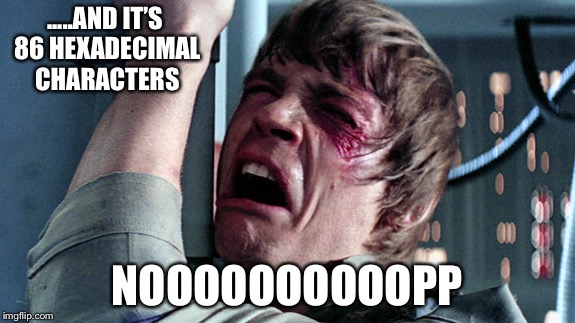 Luke skywalker nooooo | .....AND IT'S 86 HEXADECIMAL CHARACTERS NOOOOOOOOOOPP | image tagged in luke skywalker nooooo | made w/ Imgflip meme maker
