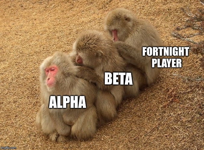 Is this funny to someone? | ALPHA BETA FORTNIGHT PLAYER | image tagged in fortnite | made w/ Imgflip meme maker