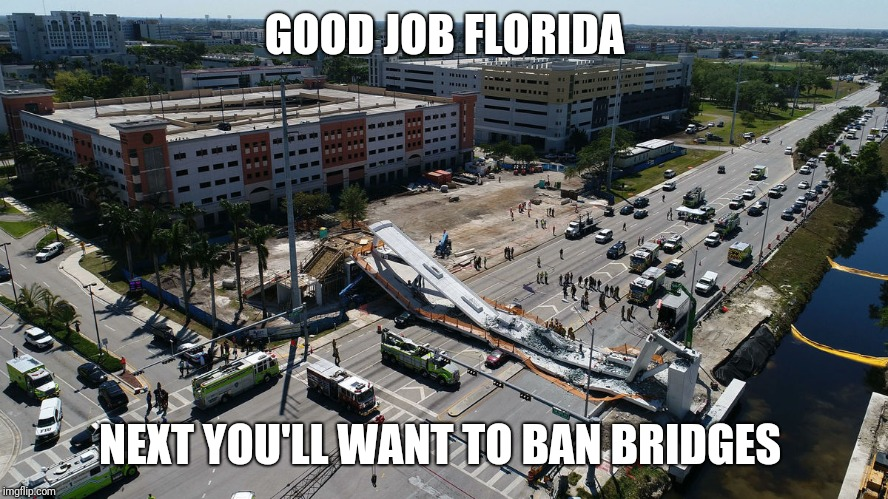 Florida Fails |  GOOD JOB FLORIDA; NEXT YOU'LL WANT TO BAN BRIDGES | image tagged in florida,bridge,collapse,school shooting,second amendment,2nd amendment | made w/ Imgflip meme maker