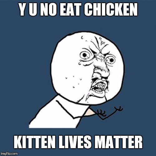 Y U No Meme | Y U NO EAT CHICKEN KITTEN LIVES MATTER | image tagged in memes,y u no | made w/ Imgflip meme maker