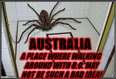 AUSTRALIA A PLACE WHERE WALKING AROUND WITH B.O. MAY NOT BE SUCH A BAD IDEA! | image tagged in nightmare | made w/ Imgflip meme maker