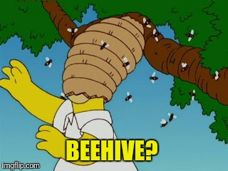 BEEHIVE? | made w/ Imgflip meme maker