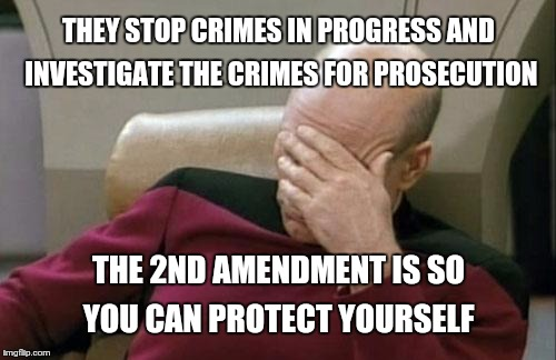 Captain Picard Facepalm Meme | THEY STOP CRIMES IN PROGRESS AND INVESTIGATE THE CRIMES FOR PROSECUTION THE 2ND AMENDMENT IS SO YOU CAN PROTECT YOURSELF | image tagged in memes,captain picard facepalm | made w/ Imgflip meme maker