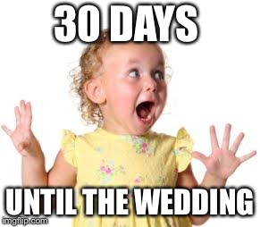 excited much | 30 DAYS UNTIL THE WEDDING | image tagged in excited much | made w/ Imgflip meme maker