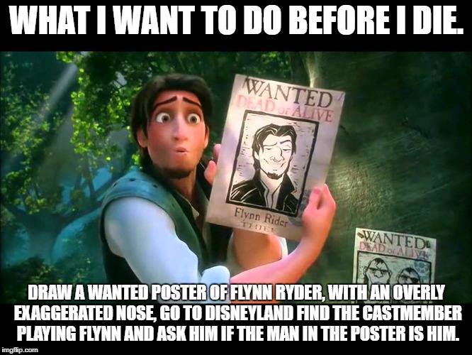 tangled | WHAT I WANT TO DO BEFORE I DIE. DRAW A WANTED POSTER OF FLYNN RYDER, WITH AN OVERLY EXAGGERATED NOSE, GO TO DISNEYLAND FIND THE CASTMEMBER P | image tagged in disney | made w/ Imgflip meme maker
