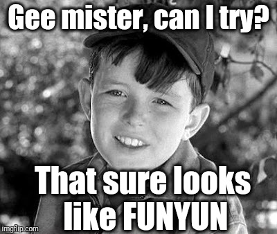beave | Gee mister, can I try? That sure looks like FUNYUN | image tagged in beave | made w/ Imgflip meme maker