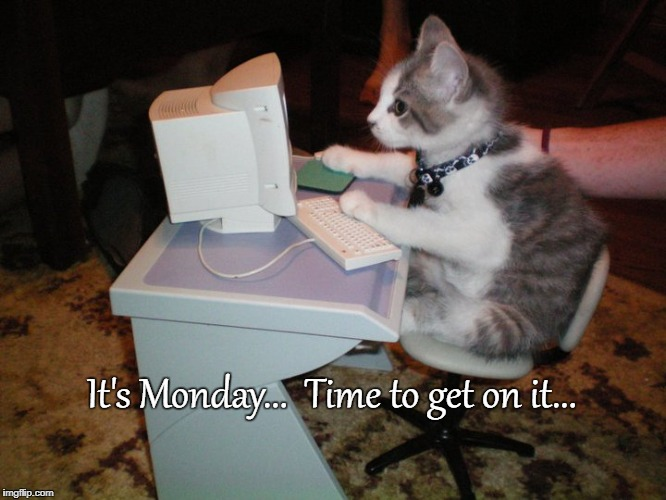 Monday... | It's Monday...  Time to get on it... | image tagged in kitten,busy,time,monday | made w/ Imgflip meme maker