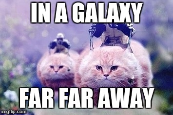 Star Wars Memes | IN A GALAXY FAR FAR AWAY | image tagged in cats are awesome,star wars | made w/ Imgflip meme maker