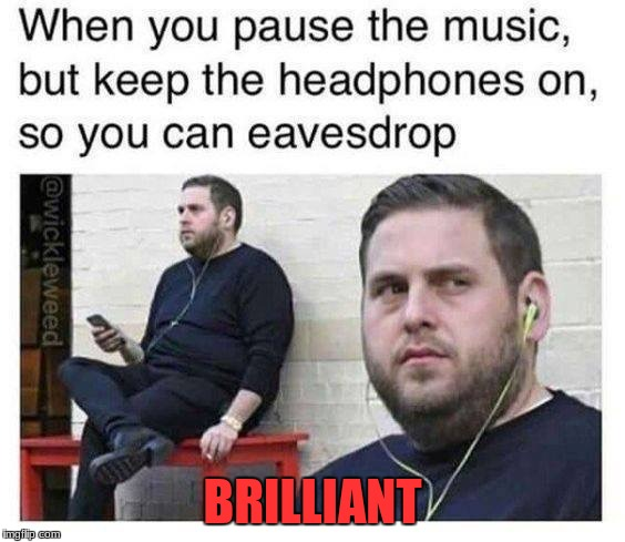 Brilliant | BRILLIANT | image tagged in eavesdropping,funny,music,brilliant | made w/ Imgflip meme maker