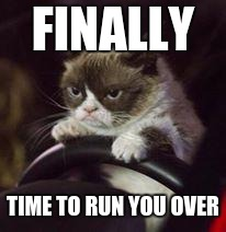 Grumpy Cat Car | FINALLY TIME TO RUN YOU OVER | image tagged in grumpy cat car | made w/ Imgflip meme maker