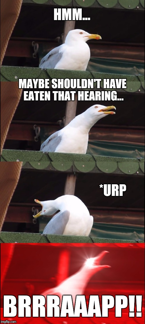 Inhaling Seagull Meme | HMM... MAYBE SHOULDN'T HAVE EATEN THAT HEARING... *URP BRRRAAAPP!! | image tagged in memes,inhaling seagull | made w/ Imgflip meme maker