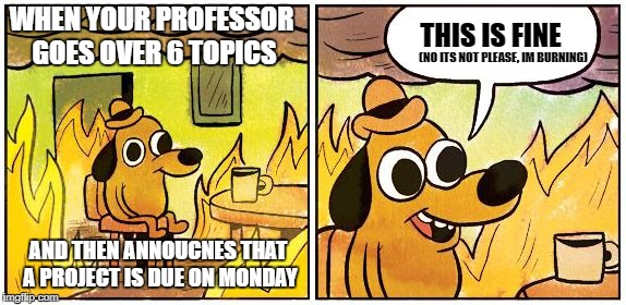 Whats on the Inside. | WHEN YOUR PROFESSOR GOES OVER 6 TOPICS AND THEN ANNOUCNES THAT A PROJECT IS DUE ON MONDAY THIS IS FINE (NO ITS NOT PLEASE, IM BURNING) | image tagged in this is fine blank | made w/ Imgflip meme maker