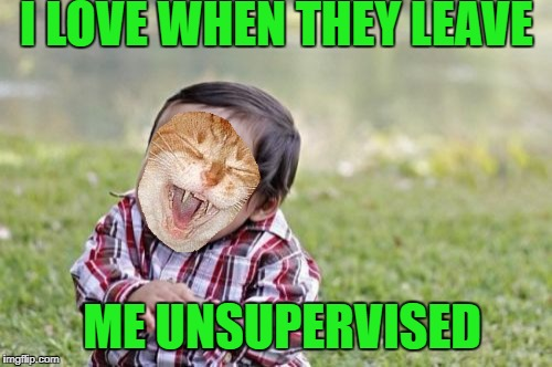Evil Toddler Meme | I LOVE WHEN THEY LEAVE ME UNSUPERVISED | image tagged in memes,evil toddler | made w/ Imgflip meme maker