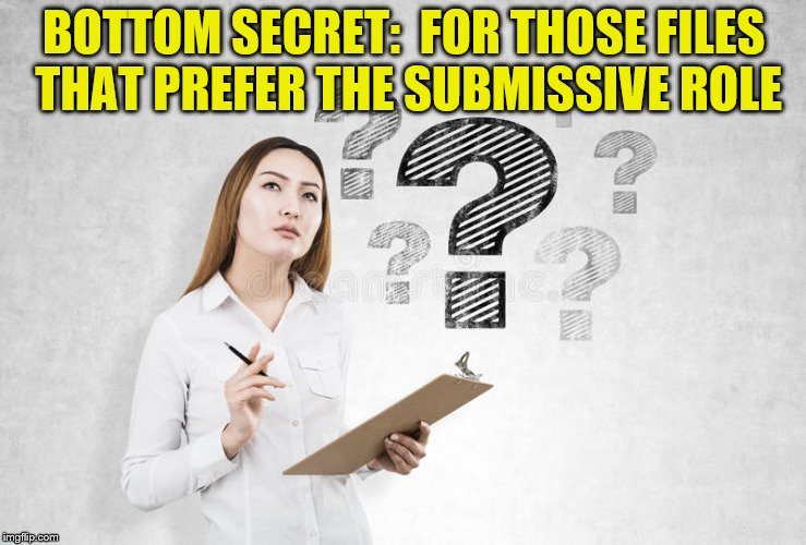 BOTTOM SECRET:  FOR THOSE FILES THAT PREFER THE SUBMISSIVE ROLE | made w/ Imgflip meme maker