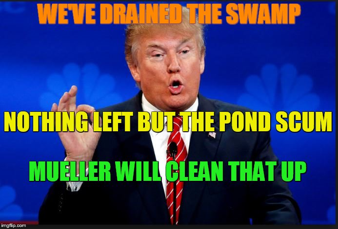 WE'VE DRAINED THE SWAMP NOTHING LEFT BUT THE POND SCUM MUELLER WILL CLEAN THAT UP | image tagged in trump,mueller,collusion,politics,corruption,drain the swamp | made w/ Imgflip meme maker